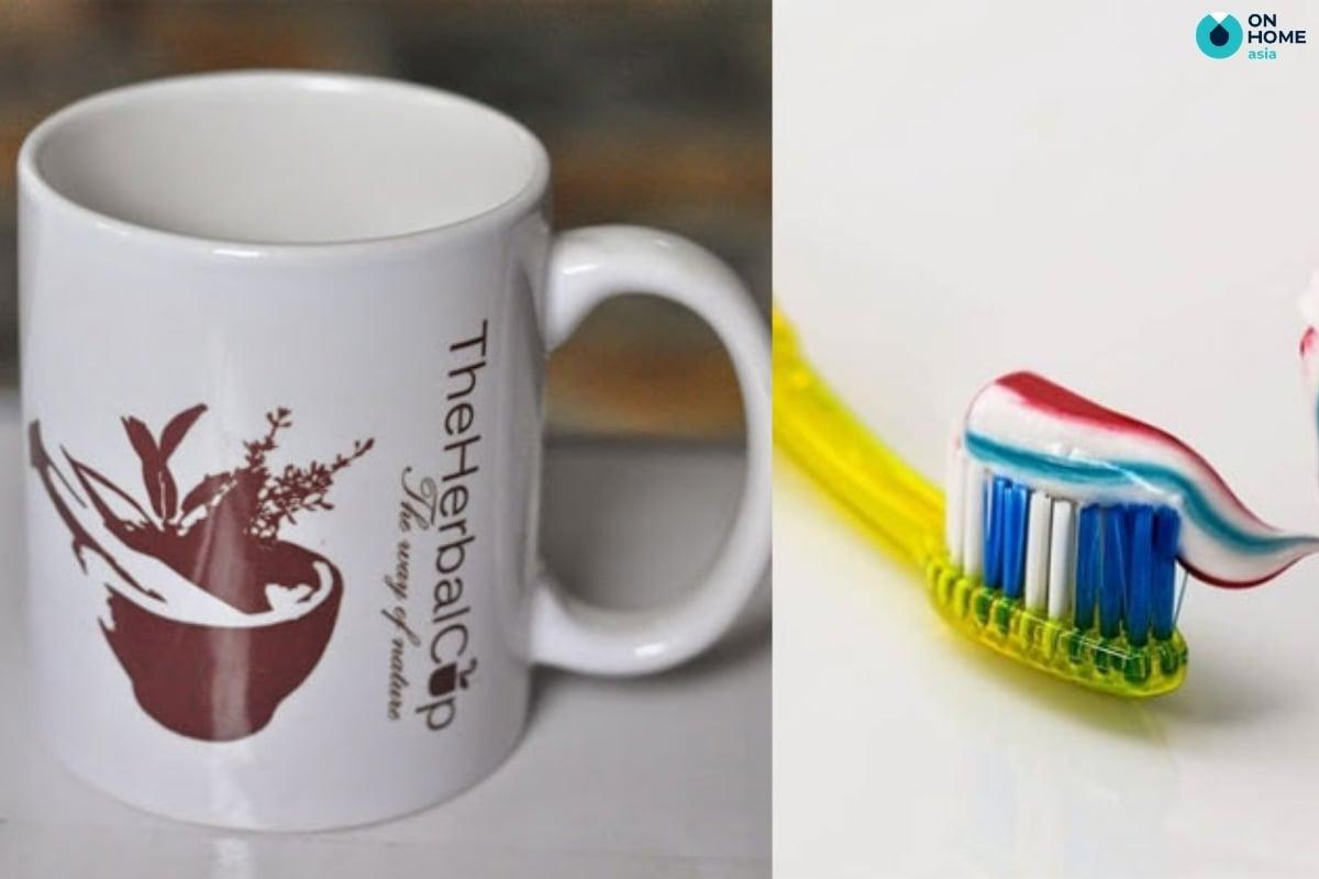 làm sạch ly sứ bằng kem đánh răng