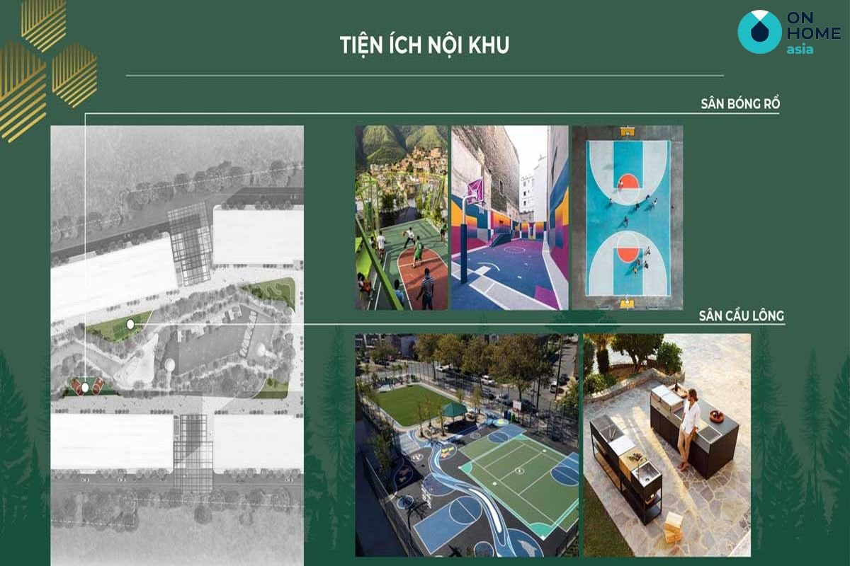 tien-ich-noi-khu-san-bong-ro-va-san-cau-long-du-an-anderson-park