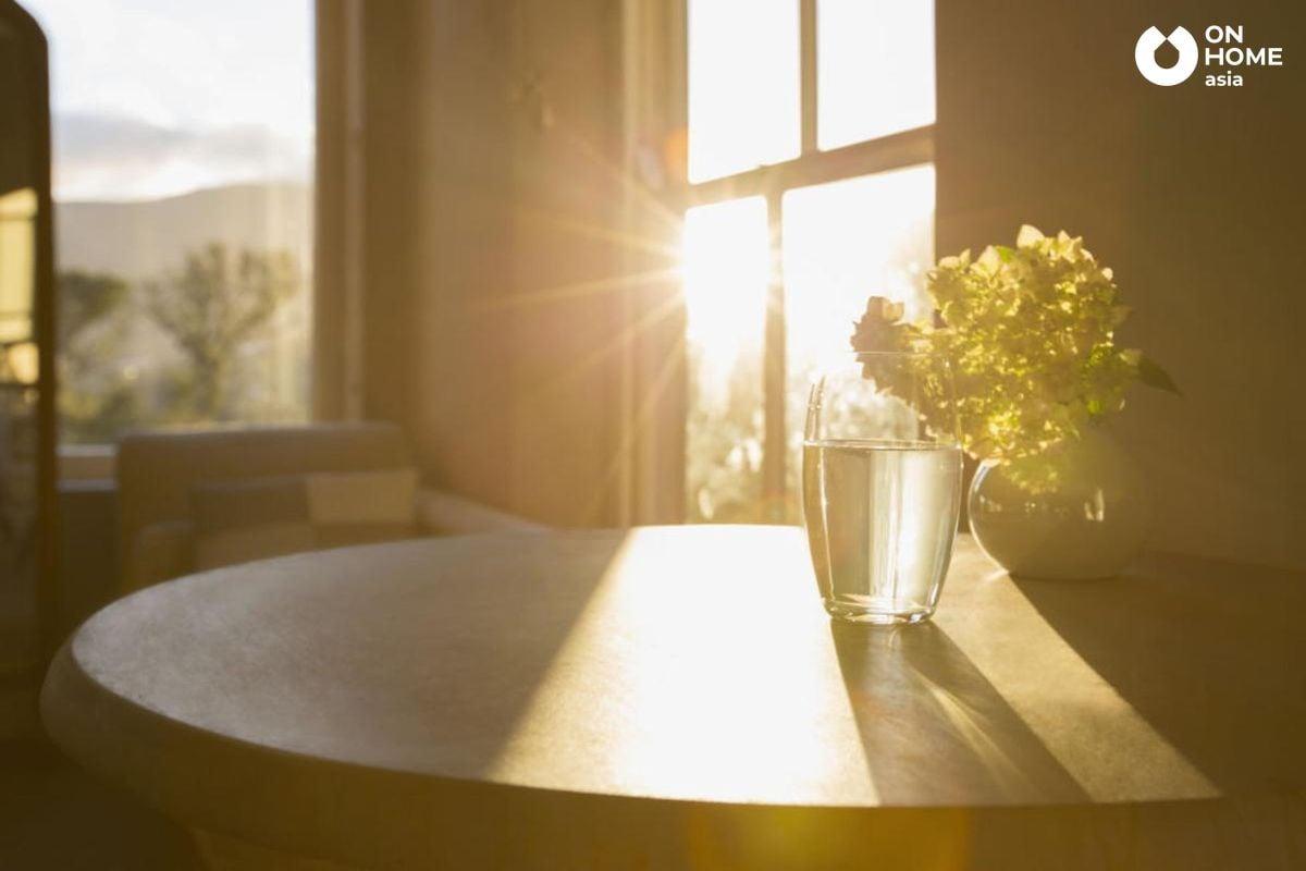 tránh ánh sáng mặt trời chiếu mạnh vào trong nhà