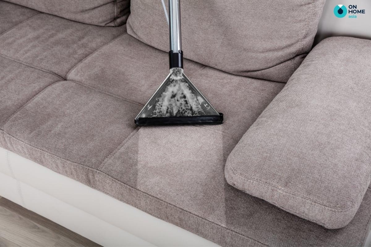vet-ban-sofa
